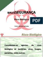 2011-1 AULA 3 - Risco Biológico e NB1-4 Ok