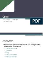 Anato Histo y Fisio de Colon