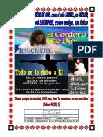 Domingo II 2015