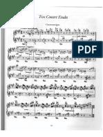 Dos estudios de concierto Liszt