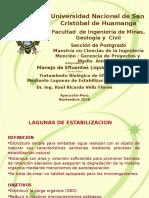 ML-602-12-2016-II Lagunas