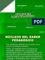Nucleos Del Saber Pedagógico