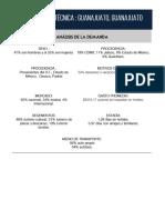 Ficha Tecnica Demanda Guanajuato
