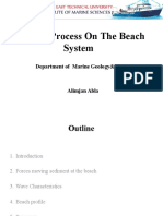 Beach Profile