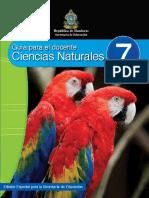CCNN7Docente.pdf
