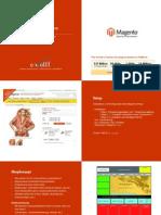 Magento Onlineshops | e-wolff Leistungen & Preise 2010