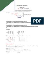 Algebra de Matriz 1