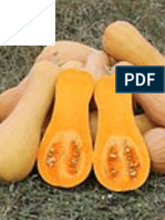 Effectiveness of organic substances in the control of powdery mildew (Sphaerotheca fuligenia) of butternut (Cucurbita moschata PEPO)
