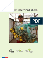 Plan de Insercion Laboral FOSIS