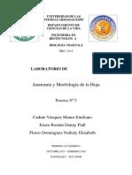 Informe_laboratorio_HOJA__Cadme_Erazo_Flores_201520 (1)
