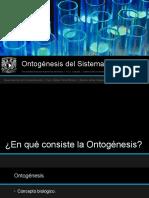 Ontogenesis del Sistema Nervioso