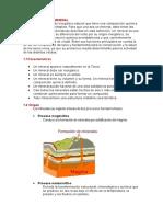Monográficos de mineral.docx