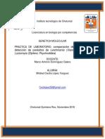 GENETICA MOLECULAR TAREA.pdf