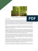 DesarrolloComplejosForestalesEcuador