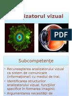 analizator_vizual_ppt