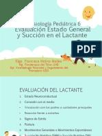 PED 6 Evaluación General y Succión