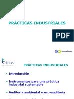 Presentacion1 Practicas Industriales