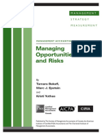 Managing Opportunities and Risk March08.PDF