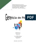 Gerencia de Proyecto.docx