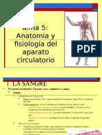 2 Sistema Circulatorio