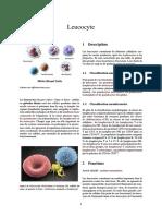 Leucocyte (1)