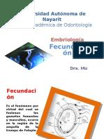 2 1fecundacin Embriologa 120213000013 Phpapp01