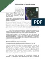 La Dependencia Petrolera y La Amazonía Peruana