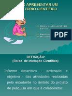 relatcientifico2006