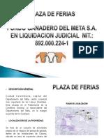 Brochure Actividad Plaza de Ferias