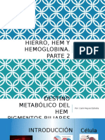 Hierro, Hem y Hemoglobina