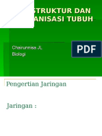 Struktur dan Organisasi Tubuh.ppt