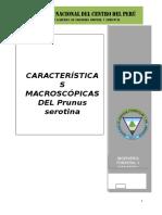 Caracteristicas macroscopicas del Prunus serotina