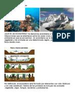 limites de los ecosistemas.docx