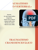 Traumatismo Craneoencefálico y Vertebromedular