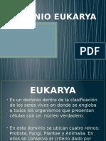DOMINIO EUKARYA