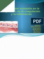 El papel del endotelio en la regulación de.pptx