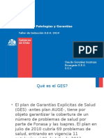 GES, Concepto, Patologías y Garantías Taller Inducción (1)