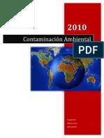 Contaminacion-Ambiental (1)