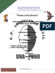 Albañileria Estructural- Trabajo