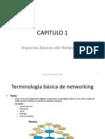 Capitulo 1 Aspectos Basicos Del Networking