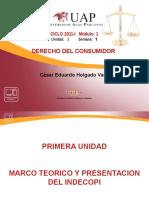 1dconsumidor-importanciadecontarconunsistemadeproteccinalconsumidor-130310100202-phpapp02.ppt