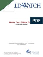 riskingcorn culture