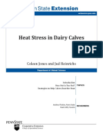 Heat Stress in Dairy Calves