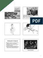 interpretationBW.pdf