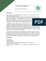 1 Práctica Coloracion 2014 (1)