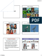 Lecture 12_Species Concepts