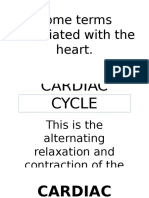 Cardiac Cycle and Other Terms
