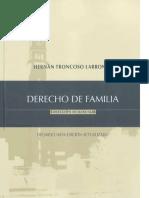 DERECHO de FAMILIA - Hernan Troncoso Larronde