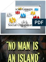 Social Organization and Structure