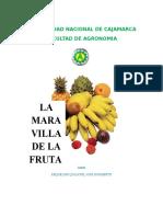 Monografia - La Maravilla de la Fruta